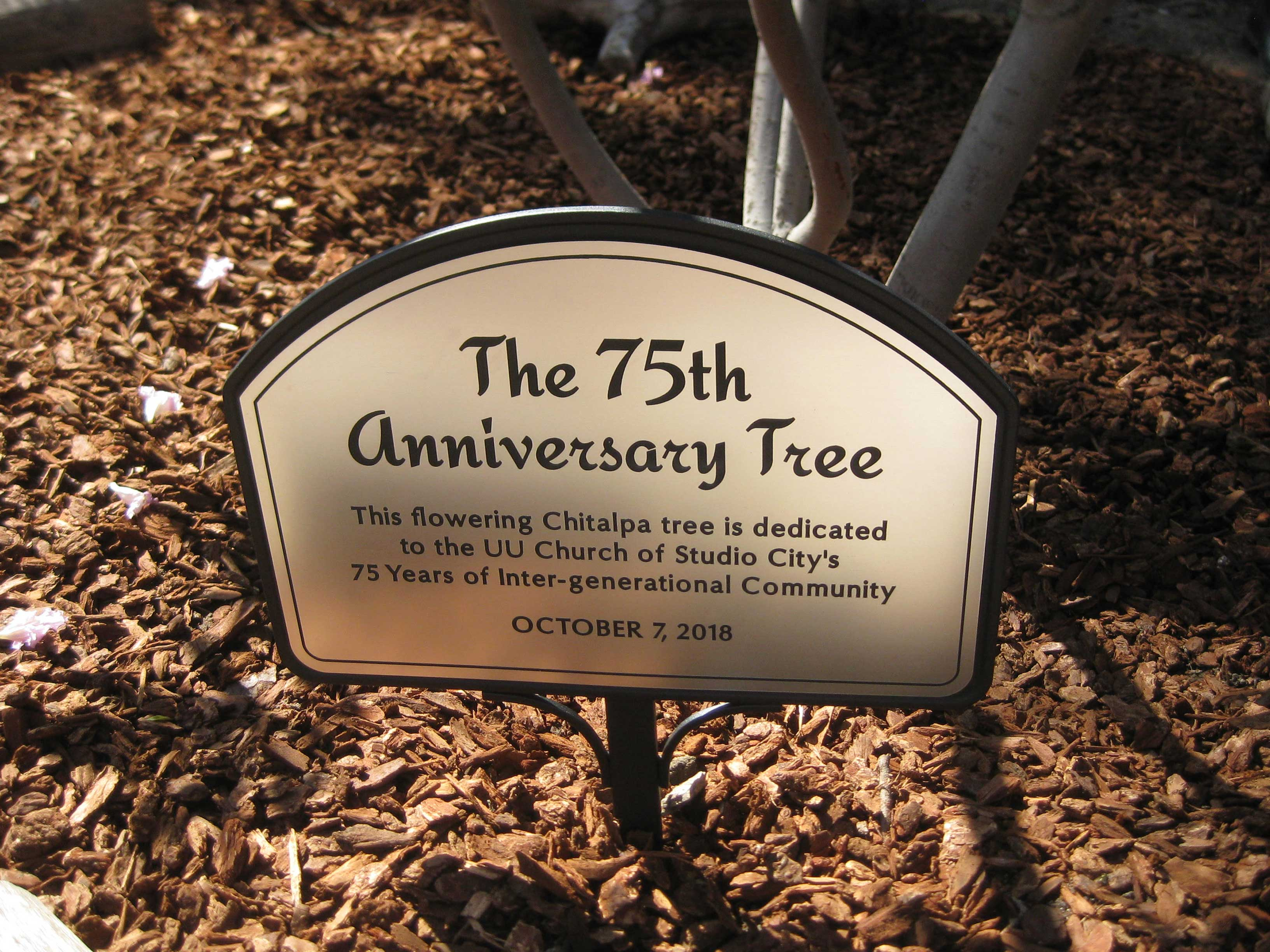 75th Anniversary Tree Dedication